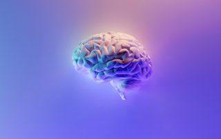 L'intelligenza emotiva incide al tavolo delle trattative